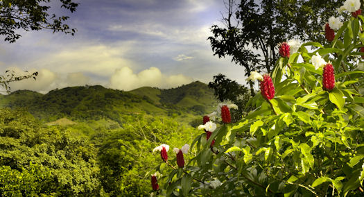 http://www.centralamericasecondhomes.com/images/costa-rica-mountain.jpg